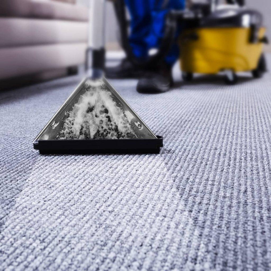 Carpet care | The Carpet Shoppe