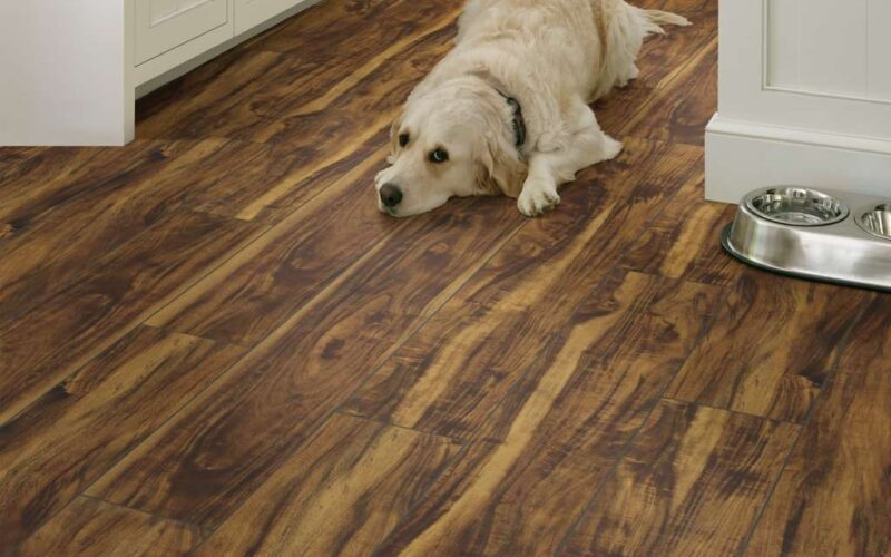 An image of a wood look floor with detailed veining and white cabinets with a Golden Retriever laying on the floor.